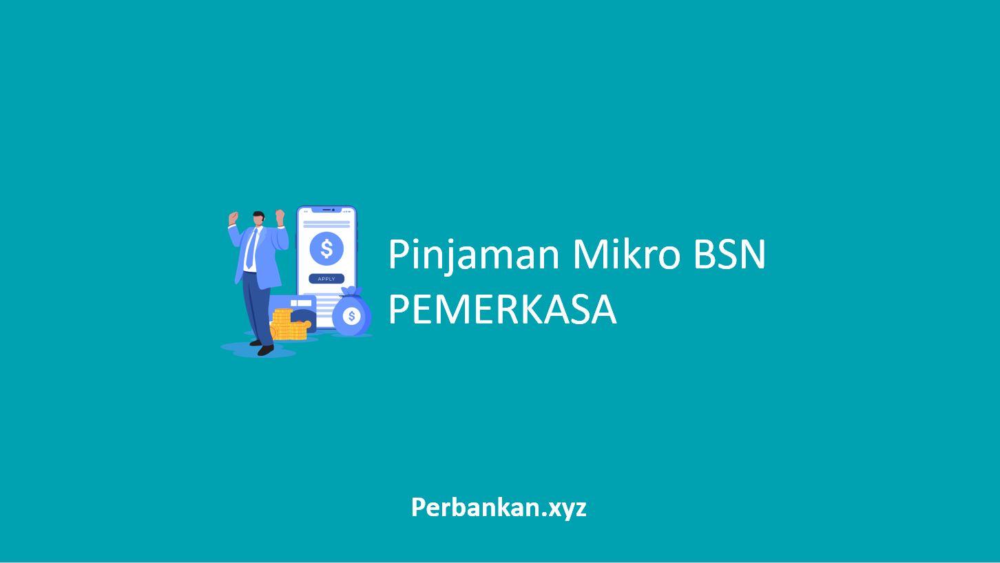 Pinjaman Mikro BSN